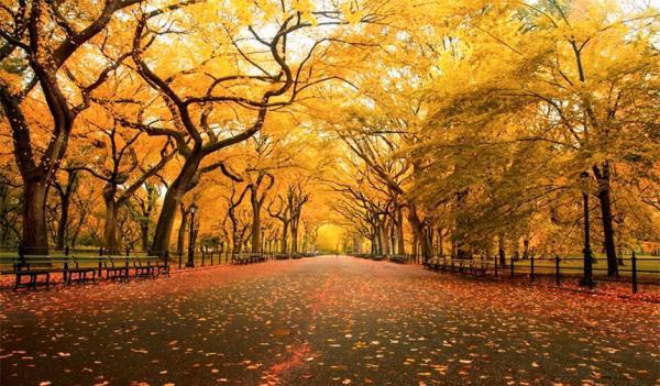 Autumnal là gì?